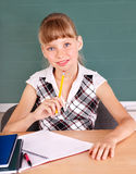 Schoolchild in classroom near blackboard. Royalty Free Stock Photography