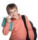 Schoolchild in glasses Stock Photo