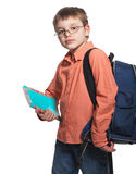 Schoolchild in glasses Royalty Free Stock Images