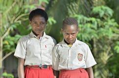 Schoolchildren in uniform. Stock Photos