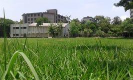 Schoolgebied Stock Foto's