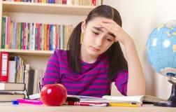 Schoolgirl doing her homework Stock Photos