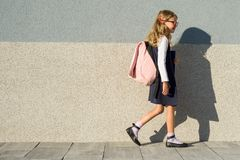 Schoolgirl of elementary school with notebooks in his hand. A girl with a backpack goes to school. Back to school royalty free stock photo