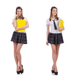 The schoolgirl isolated on the white Royalty Free Stock Images