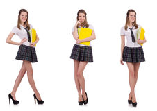 The schoolgirl isolated on the white Royalty Free Stock Photo