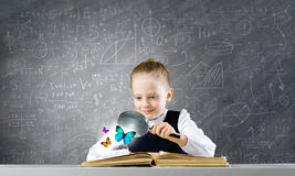 Schoolgirl at lesson Royalty Free Stock Image