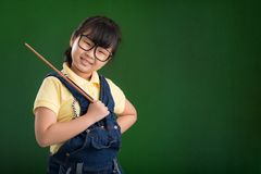 Schoolgirl with a pointer Royalty Free Stock Photography