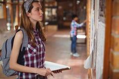 Schoolgirl reading notice board in corridor. At school royalty free stock images