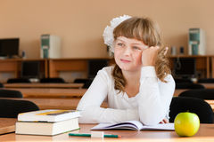Schoolgirl's portrait at school desk Stock Image