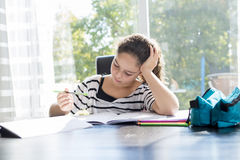 Schoolgirl studying with books on the kitchen Stock Photo
