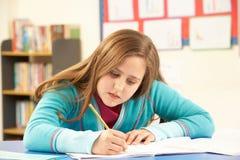 Schoolgirl Studying In Classroom Stock Images