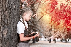 Schoolgirl teenager reading a book in a park near a tree royalty free stock images