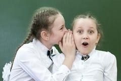 School friend tells a secret in his ear. Schoolgirls classmates share their secrets of secrets telling a whisper in his ear near the blackboard in the office stock photo