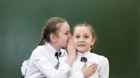School friend tells a secret in his ear. Schoolgirls classmates share their secrets secrets telling a whisper in his ear near the blackboard in the office royalty free stock photography