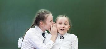 School friend tells a secret in his ear. Schoolgirls classmates share their secrets of secrets telling whisper in his ear near blackboard in the office royalty free stock image