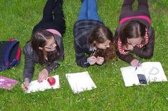 Schoolgirls learning Stock Images