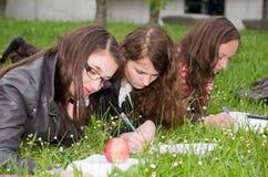 Schoolgirls learning Stock Photos