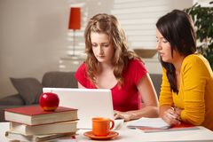 Schoolgirls studying at table. Stock Photos