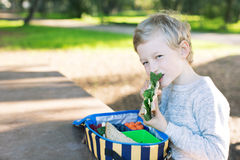 Schoolkid eating lunch Stock Images