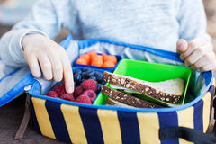 Schoolkid eating lunch Royalty Free Stock Photography