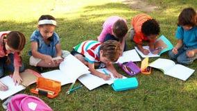 Schoolkinderen die thuiswerk op gras doen stock video