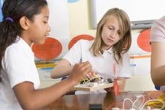 Schoolmeisjes in een wetenschapsklasse royalty-vrije stock foto