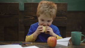 Schoolonderbreking Hongerig jong geitje die appel in klaslokaal eten Schooljongen die een appel hebben tijdens zijn middagpauze G stock footage