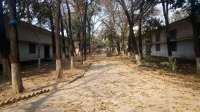 Schoolweg Stock Afbeelding