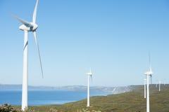 Schoon Vernieuwbaar Windenergielandbouwbedrijf Australië stock afbeeldingen