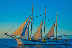 Schooner sailing in evening Royalty Free Stock Images
