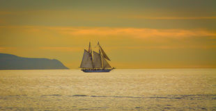 Schooner sailing out to sea. Schooner sailing on a calm sea during the sunset Stock Photography