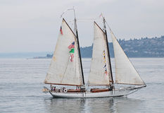 Schooner under full sail Royalty Free Stock Image