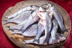 Schoongemaakte verse vissen op houten scherpe plaat klaar voor het koken Royalty-vrije Stock Foto