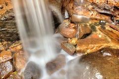 Schoonheid 4 van Dothalugala Royalty-vrije Stock Foto
