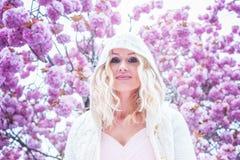 Schoonheid in de lentebloesems royalty-vrije stock afbeeldingen