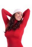 Schoonheid in de winter Stock Afbeeldingen