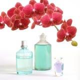 Schoonheid die met rode orchidee wordt geplaatst Stock Afbeelding