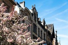 Schoonheid Epoque -epoque-wijk in de stad van Antwerpen, België Royalty-vrije Stock Afbeeldingen