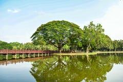 Schoonheid in het Historische Park van Sukhothai Royalty-vrije Stock Foto's