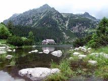 Schoonheid van bergen Royalty-vrije Stock Foto's