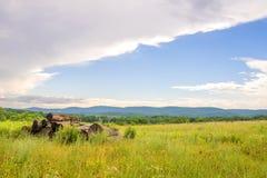 Schoonheid van de landelijke zomer stock afbeeldingen