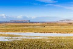 Schoonheid van glasgebied tijdens de winter met duidelijke blauwe hemel Royalty-vrije Stock Afbeelding