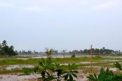 Schoonheid van het heiligdom van Kumarakom Keralabird royalty-vrije stock foto