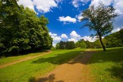 Schoonheid van het park Stock Foto's