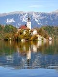 Schoonheid van Meer Bohinj in Slovenië Stock Afbeeldingen