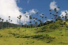 Schoonheid van Valle DE Cocor royalty-vrije stock fotografie