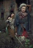 schoonheids dames Stock Fotografie