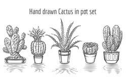Schoonheidscactussen Hand getrokken cactus in pottenreeks Stock Afbeelding