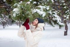 Schoonheidsmeisje de de winterachtergrond Stock Foto