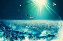 Schoonheidsoceaan Stock Afbeelding